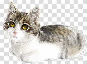 Cat Kitten Illustration, Cute cat PNG