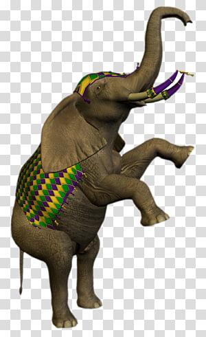 African elephant Circus Drawing Animal, Circus PNG