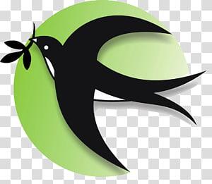 Barn swallow Bird Logo , Bird PNG clipart