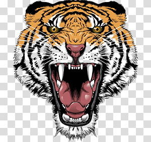 roaring orange and black tiger illustration, Tiger Lion Roar Big cat Head, Tiger Face PNG