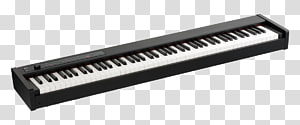 Stage piano Digital piano Korg Key, piano performances PNG