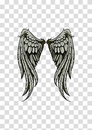 Drawing Illustration, Wings PNG