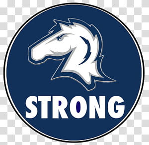 Hillsdale College Minnesota Vikings Hillsdale Chargers football Lake Erie College, strong PNG