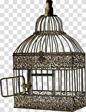 Bird Cage Cell , bird cage PNG clipart