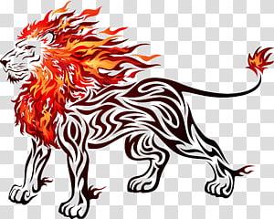 flaming lion , Lion , flame lion PNG