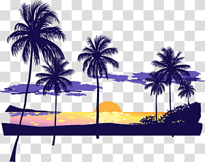 coconut tree illustrations, Sunset Beach Icon, Beach sunset dusk PNG
