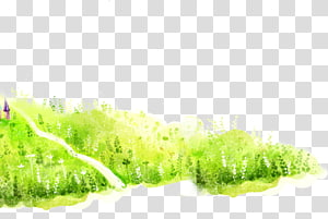 Drawing , Grass background PNG
