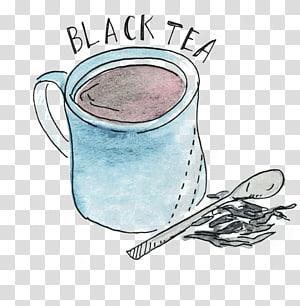 White tea Green tea Oolong Black tea, green tea PNG