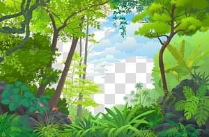Landscape Jungle Euclidean Tropical rainforest, forest, green leafed trees PNG clipart
