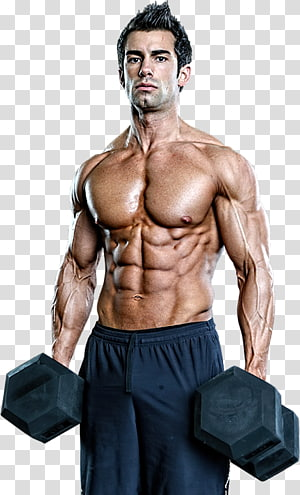 Dietary supplement Bodybuilding Human body Exercise Muscle, bodybuilding PNG