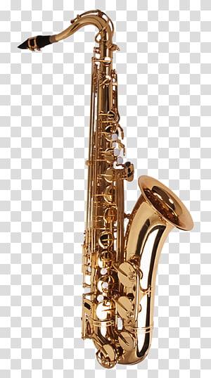 Saxophone Musical instrument Wind instrument, Musical instruments saxophone PNG