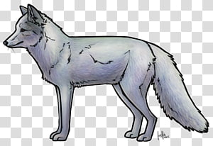 Red fox Dog breed, Dog PNG