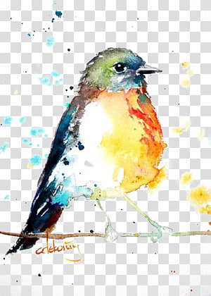 Bird European robin Watercolor painting Drawing, Birds, inverse color painting of bird on twig PNG