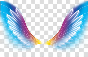 multicolored wing graphic illustration, Color Wing, Dream Wings PNG clipart