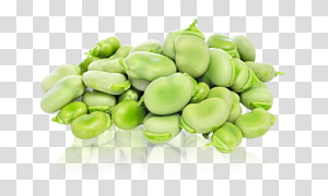 Lima bean Broad bean Vegetable Food, vegetable PNG clipart