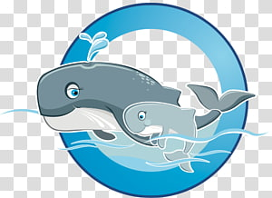 Dolphin Shark Porpoise Marine biology , Swimming Float PNG clipart