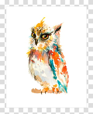 Barn owl Watercolor painting Art, owl PNG