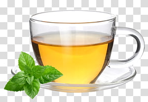 Earl Grey tea Coffee cup Green tea Mate cocido, tea PNG
