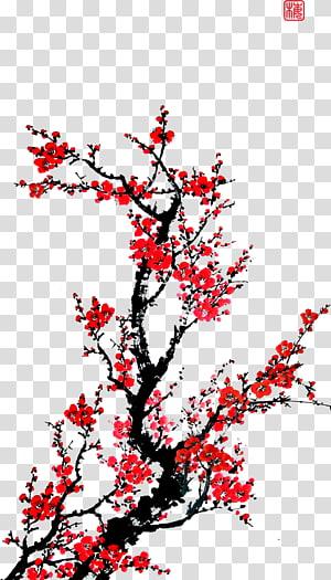 flowers,flowers,plum flower PNG