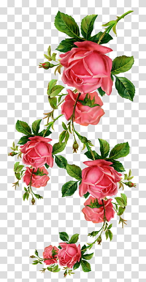 red flowers , Paper Flower , rose PNG