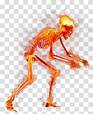 skeleton , Flame Fire, Flames Skull PNG