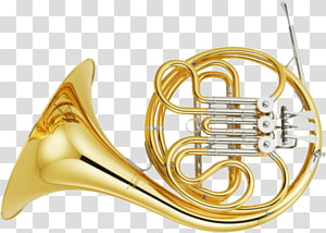 French Horns Musical Instruments Brass Instruments, french horn PNG