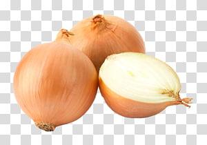 White onion Yellow onion Garlic Red onion Scallion, garlic PNG clipart