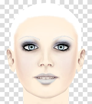 Eyelash extensions Cheek Chin Eyebrow Forehead, nose PNG clipart