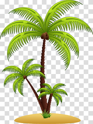 Arecaceae Tree, palm tree PNG clipart