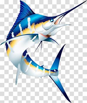 Atlantic blue marlin Marlin fishing Striped marlin , others PNG clipart