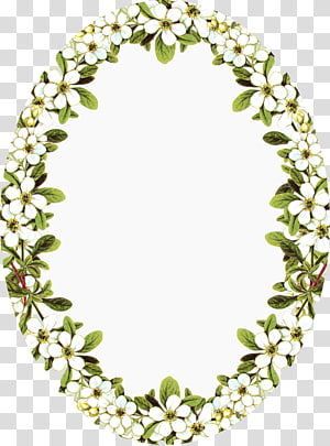 Borders and Frames Frames Flower Portable Network Graphics, flower PNG clipart