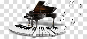 Digital piano Steinway & Sons Musical instrument Grand piano, piano PNG