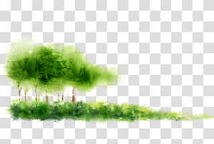 Computer file, Dream woods grass PNG clipart