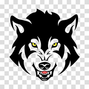 wolf face , Gray wolf illustration , Wolf PNG