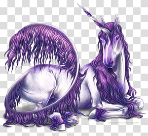 The Black Unicorn Horse Legendary creature Mythology, unicorn PNG