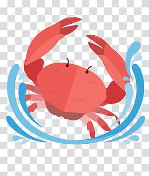 Cancer Astrological sign Horoscope Astrology Zodiac, virgo PNG