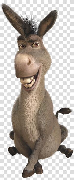 Donkey Shrek The Musical Princess Fiona Lord Farquaad, donkey PNG