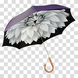 Umbrella Auringonvarjo Raincoat Fashion accessory, Umbrella PNG