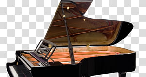 Tyneside Piano Co Ltd Feurich Yamaha Corporation Grand piano, piano performances PNG