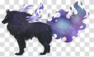 Dog breed Schipperke Snout, Dreamcatcher wolf PNG