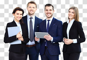 Business Company Management Organization Team, Business PNG