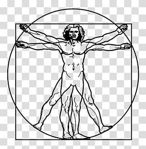 Vitruvian Man Drawing Renaissance Art, others PNG