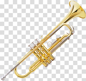Trumpet Flute Brass Instruments Musical Instruments Musical ensemble, trombone PNG
