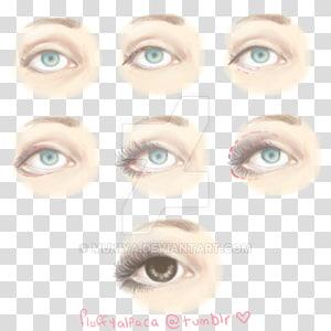 Eyelash extensions Lip balm Eye Shadow Eyebrow Eye liner, Eye PNG clipart