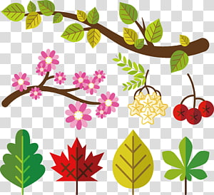Tree Leaf Icon, Exquisite green leaf design PNG clipart