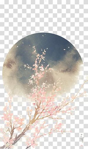 Japan Art Drawing , Beautiful,drawn illustration antiquity, cherry blossoms under moon PNG