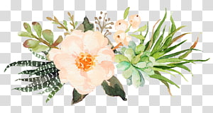 small fresh pink watercolor flowers PNG clipart