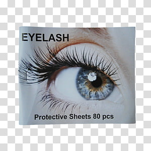 Eyelash extensions Beauty Parlour HD Brows Eyebrow, Eye PNG clipart