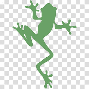 Tree frog graphics Silhouette , frog PNG