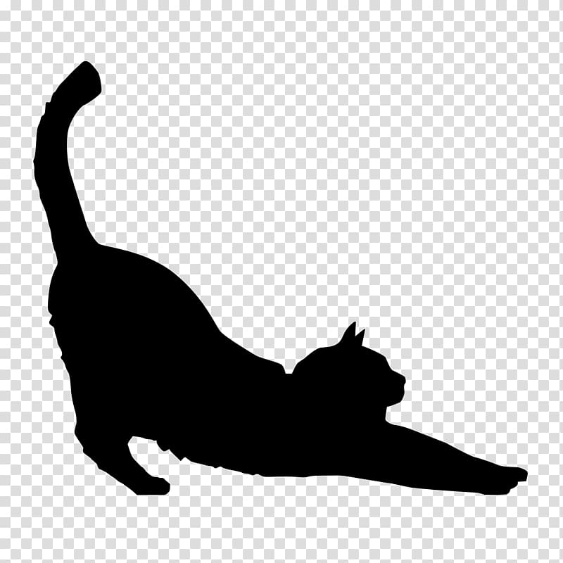 Maine Coon Kitten Silhouette Black cat , kitten PNG